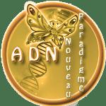 ADN Nouveau Paradigme
